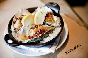 OYSTERS IN FOCUS.jpg